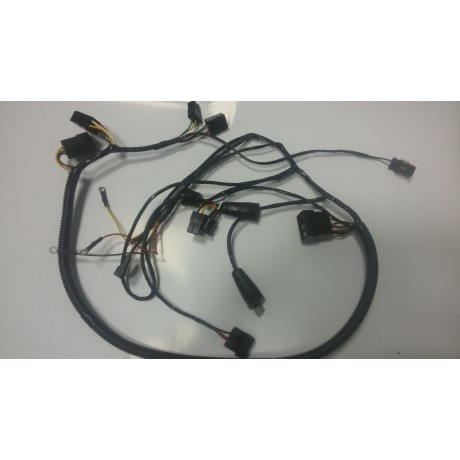 Жгут электропроводки основной С41100300