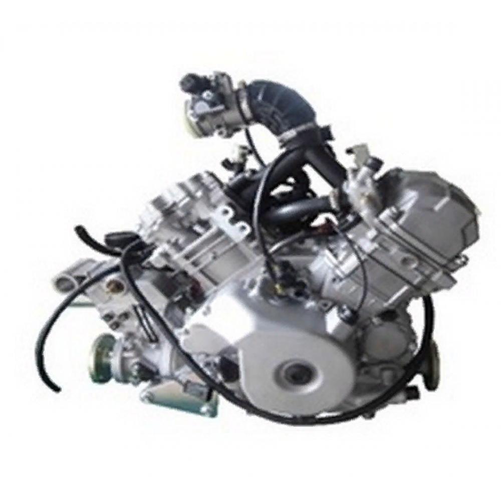 Двигатель 800сс в сборе 40800409110